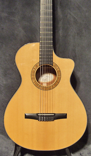 guitare village guitare acoustique d 39 occasion taylor ns. Black Bedroom Furniture Sets. Home Design Ideas